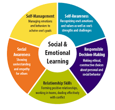 social and emotional support graphic